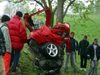 roodenindeboom