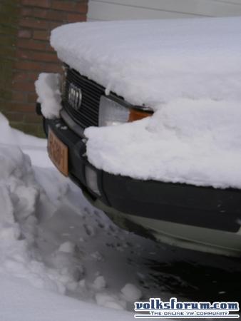 Audi sneeuw kater